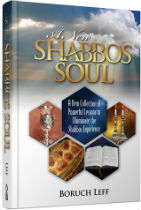 Book Shabbos Soul
