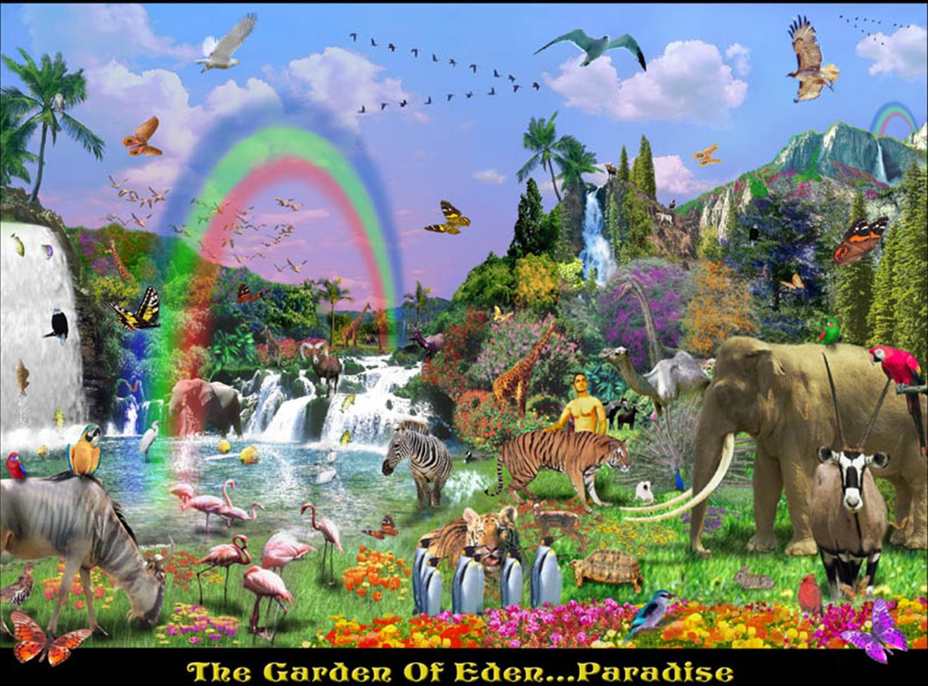 humanitys fall in the garden of eden The image of god (hebrew: צֶלֶם  focused their reflections on the dominant role mankind had over all creation in the garden of eden before the fall of man.
